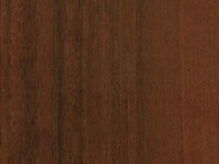 Walnut Bologne Dark